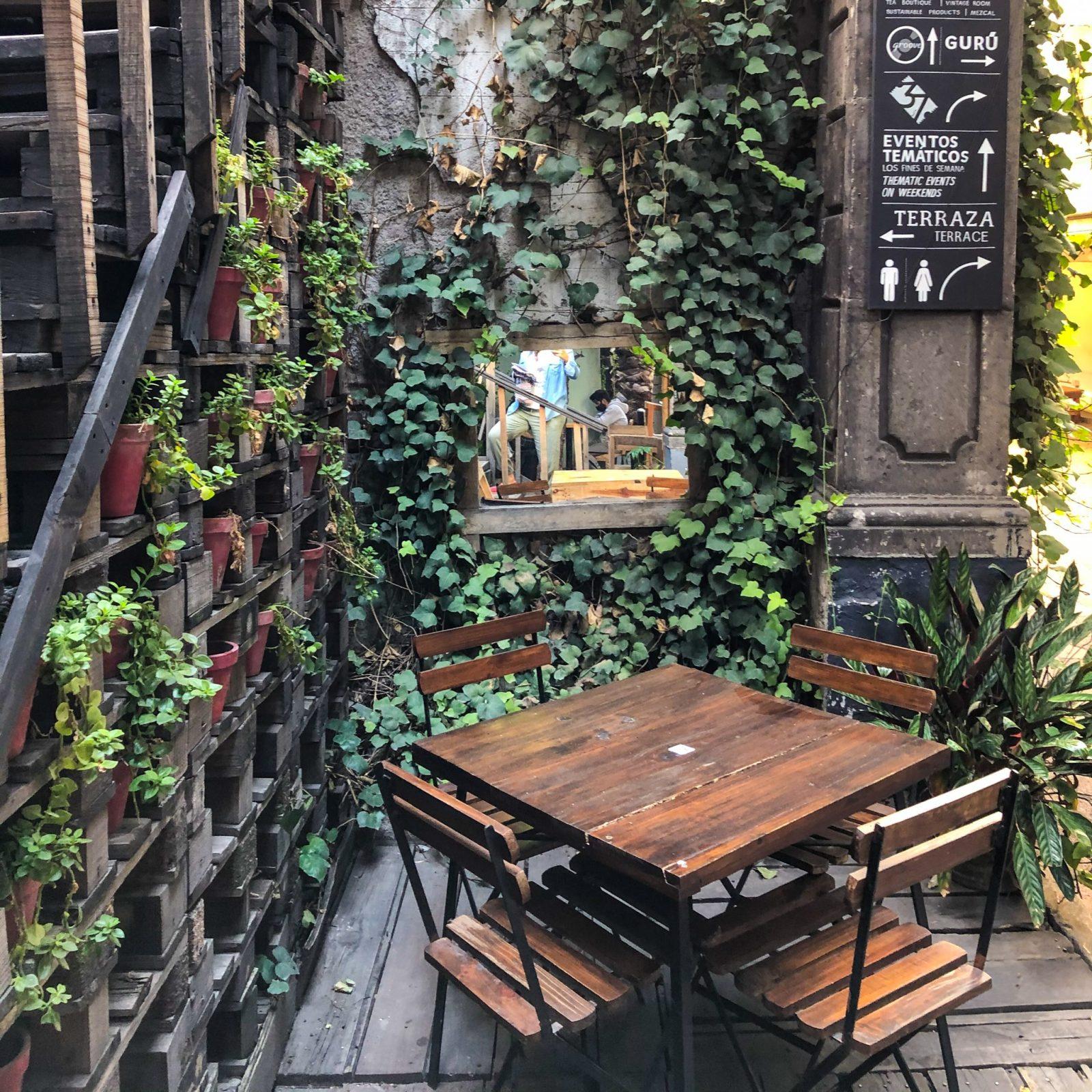 Bazar fusion jardin